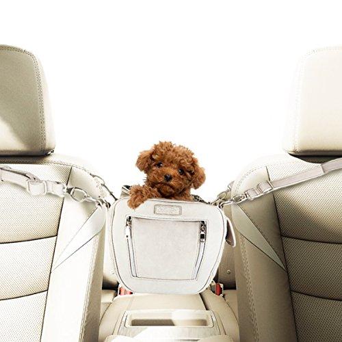 ZuGoPet Jetsetter small - Airport dog bag, travel bag, Dog Carrier, Airline compliant Pet Bag, Dog car seat, dog Handbag, Dog Purse, Pet Bag, Cat Bag (Stone ()