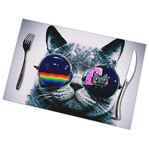 - Cat with Sunglasses Placemats Set of 6 for Dining Table Washable Polyester Placemat Non-Slip Heat Resistant Kitchen Table Mats Easy to Clean 1218inch