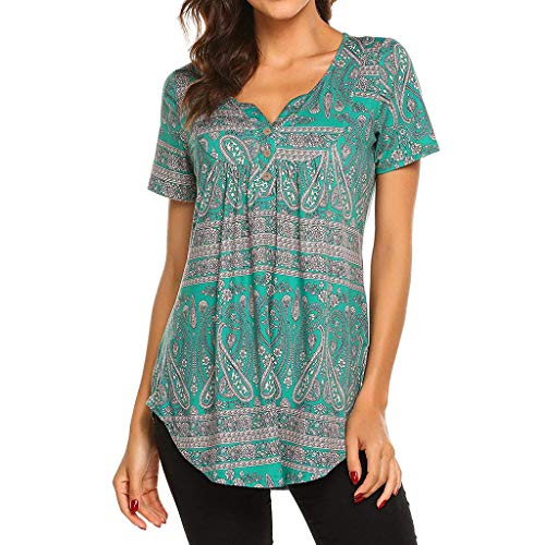Women's Paisley Printed Short Sleeve Henley V Neck Pleated Casual Flare Tunic Blouse Shirt (Blue, 2XL)