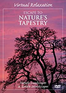 Virtual Relaxation: Escape to Nature's Tapestry