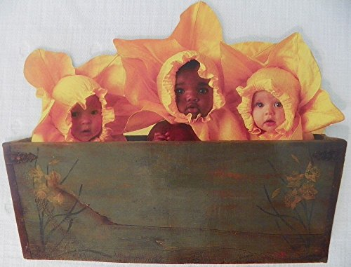 Anne Geddes 100 Piece Jigsaw Puzzle Three Babies In Sunflower Outfits In A Green Planter -