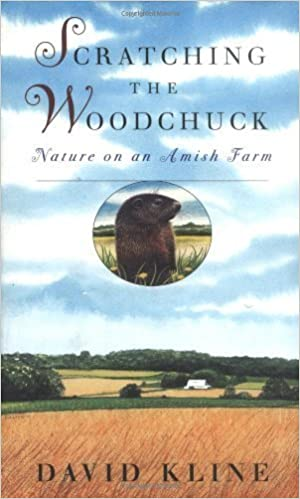 Scratching the Woodchuck: Nature on an Amish Farm by David Kline (1999-09-02)