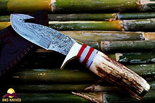 DKC Knives DKC-717-GH-DS Bald Eagle Gut Hook Damascus Bowie Hunting Handmade Knife Stag Horn Fixed Blade 10
