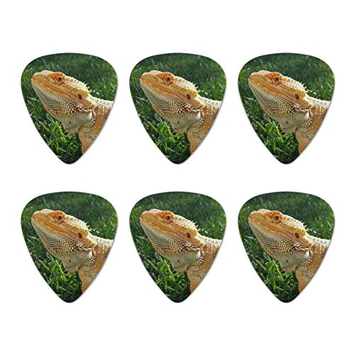 Bearded Dragon in Profile Novelty Guitar Picks Medium Gauge - Set of 6]()
