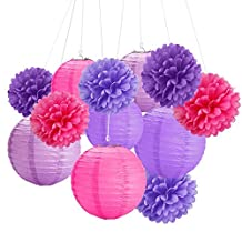 12Pcs 8'' 10'' Tissue Paper Pom Pom Flowers and Paper Lanterns Party Decoration (Violet, Purple and Red)