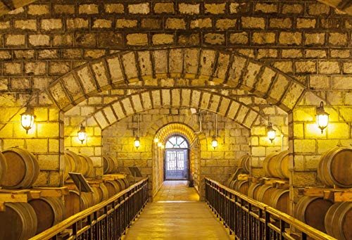 Yeele 7x5ft Wine Cellar Shower Photography Background Underground Winery Wine Cellar with Wooden Barrels Wood Plank Photo Backdrops Pictures Pattern Portrait Photoshoot Props