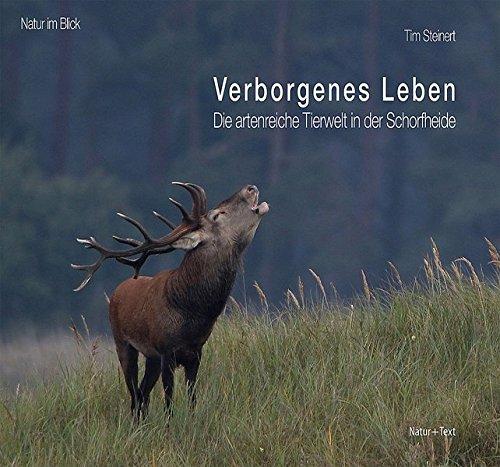 verborgenes-leben-die-artenreiche-tierwelt-in-der-schorfheide-natur-im-blick