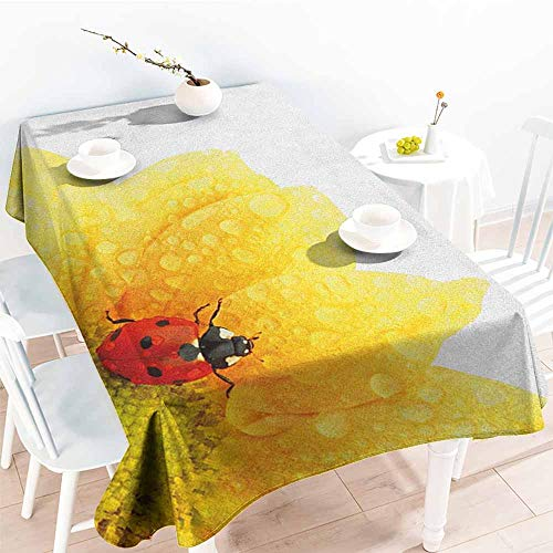 familytaste Yellow Flower,Table Cloth for Outdoor Picnic Cute Little Ladybug on Gerbera Wet Petals Water Drops Fresh Garden 50