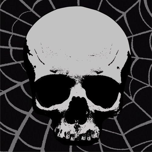 Creative Converting 18 Count Skull Terror Beverage Napkins ()
