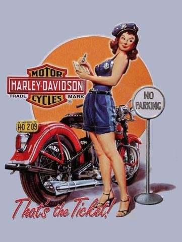 Amazon harley davidson motorcycle ticket babe pin up metal sign harley davidson motorcycle ticket babe pin up metal sign freerunsca Images