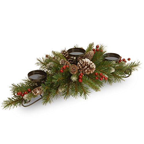 (National Tree 30 Inch Frosted Berry Centerpiece with 3 Candle Holders (FRB3-800-30C-B1))