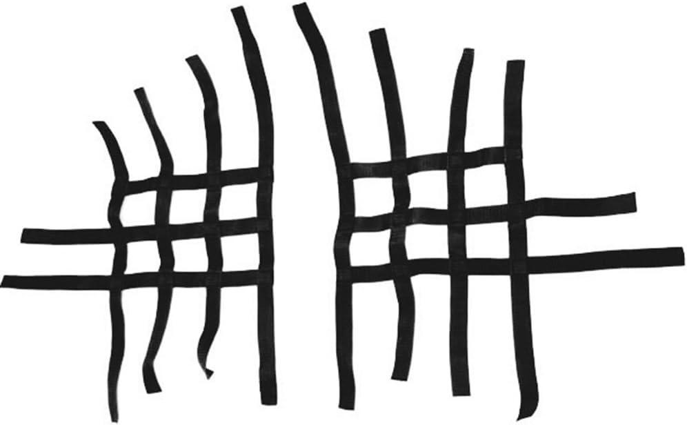 Nerfbar Netz Quad ATV schwarz Nerf bar R1