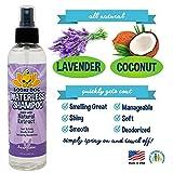 New Waterless Dog Shampoo | All Natural Dry Shampoo