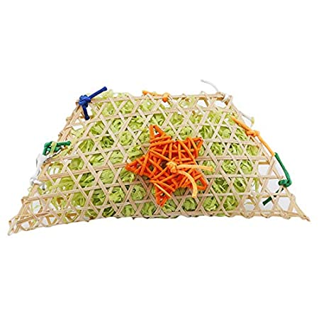 Amazon.com: Bird Toys - Grass Bird Parrot Swing Cage S Aging ...