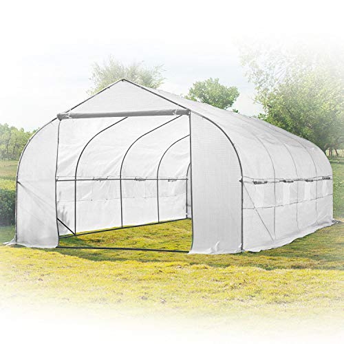 KapscoMoto Garden Greenhouse Walk-in Green Hot Plant House Shed Storage PE Cover 20ft x 10' Hothouse for Fruits, Vegetables, Plants, and Flowers - 20ft L x 10ft W x 7ft H