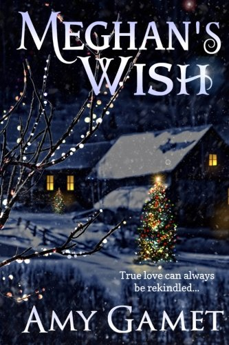 Meghan's Wish (Love and Danger) (Volume 4)