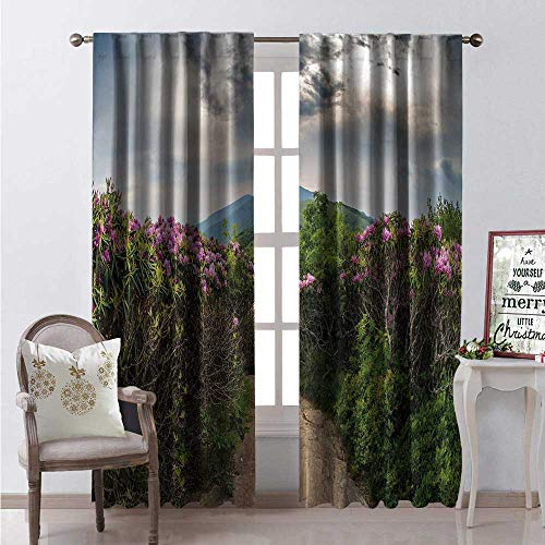 Hengshu Appalachian Trail Room Darkening Wide Curtains Summer Photo Descending Jane Bald Through Rhododendron Flowers Blooming Waterproof Window Curtain W108 x L84 Multicolor