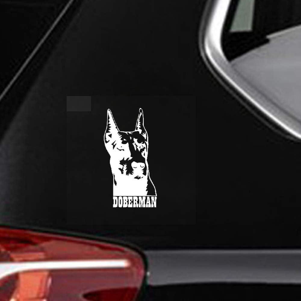 8.9X16.7Cm Etiqueta engomada del coche Decoración Calcomanía Ventana Parachoques Doberman Perro Mascota Para Coche Laptop Ventana Etiqueta