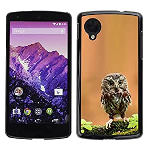 YOYO Slim PC / Aluminium Case Cover Armor Shell Portection //Cute Curious Mini Owl //LG Google Nexus 5