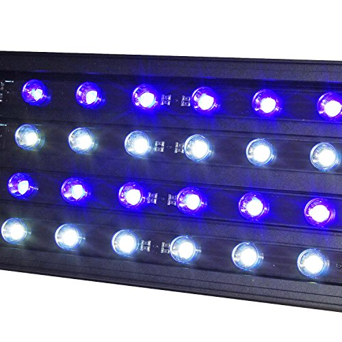 Led Lights For Snakes - 5