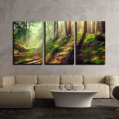 wall26 - 3 Piece Canvas Wall Art - Beautiful Scene of Misty Old Path in Forest on an Sunny Autumn Morning - Modern Home Decor Stretched and Framed Ready to Hang - 24