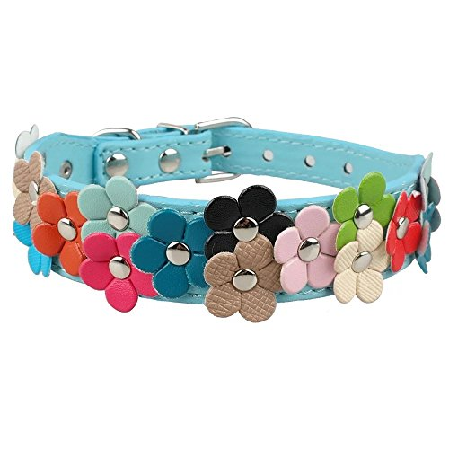 (Beirui Cute PU Leather Dog Collar with Adorable Flowers Neck for 13-15