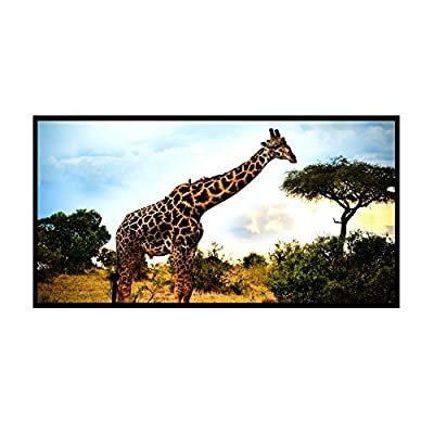 """Cloud Mountain 84"""" / 100"""" / 120"""" Matte White Projector Projection Screen 16:9 73""""x41"""" Viewing Area 1.1 Gain"""