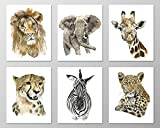 zoo animal pictures - Nursery wall art #A067 - Set of 6 Animal art prints (8x10). Nursery art.Savannah nursery.Savannah animals.Wildlife prints.Wildlife art prints.Zoo animal pictures.Africa animals.