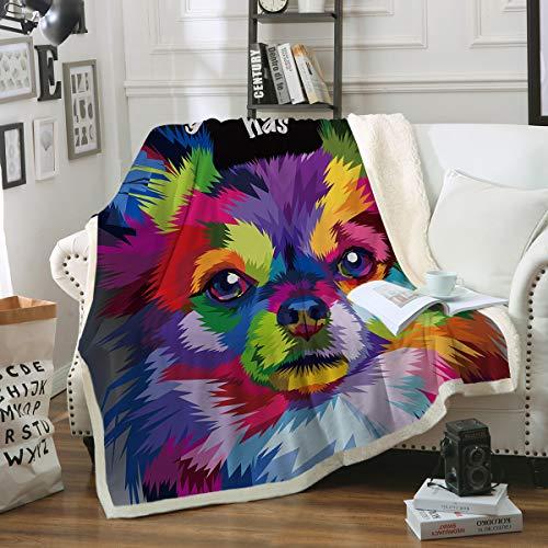 Sleepwish Pomeranian Throw Blanket Dog Colorful Art Cozy Blanket Rainbow Plush Sherpa Fleece Blanket for Puppy Lovers (Twin 60
