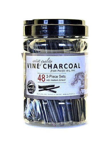 Pacific Arc Vine Charcoal 3-Piece Sets canister of 48 by Pacific Arc