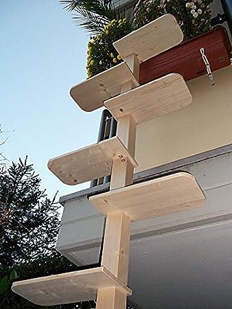Katzentreppe Xl Katzenleiter Natur Katzenbaum Katzen Treppe Balkon
