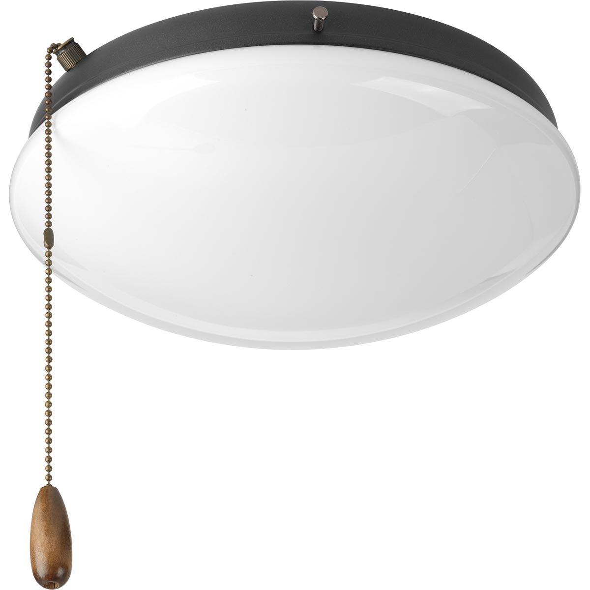 Progress Lighting P2602-143WB Fan Light Kit, Graphite