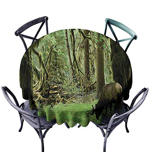VIVIDX Indoor/Outdoor Round Tablecloth,Rainforest,Roosevelt Elk in Rainforest Wildlife National Park Washington Antlers Theme,for Banquet Decoration Dining Table Cover,55 INCH,Green Brown