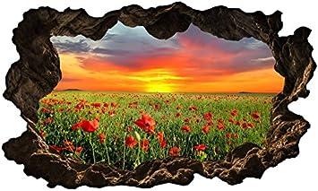 3d Wandtattoo Blumen Feld Mohnblume Sonne Wandbild Wandsticker Selbstklebend Wandmotiv Wohnzimmer Wand Aufkleber 11e613 Wandbild Grosse E 98cmx58cm Amazon De Kuche Haushalt