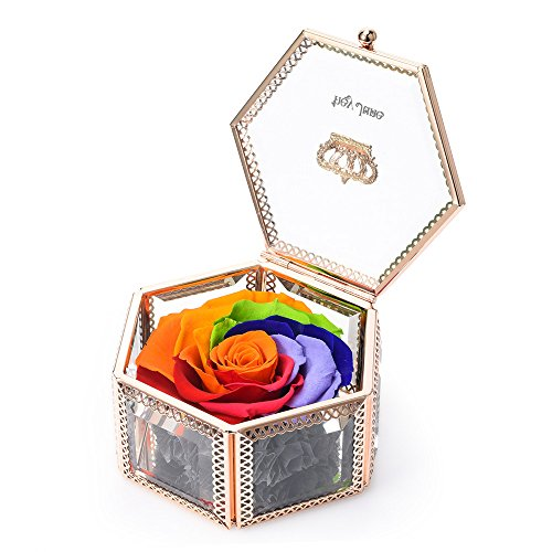 Best Gifts for Women, Preserved Flower Rose, Anniversary Gifts, Mom Gifts, Best Gift for Her on Valentine's Day, Mother's Day, Birthday, Anniversary, Wedding (Hexagonal Rainbow) (The Best Valentine Gifts)
