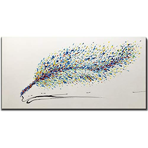 Amei Art Paintings,24X48Inch Hand-Painted On Canvas Colorful Feather White Background Abstract Oil Painting Contemporary Artwork Simple Modern Wall Art Home Decor Wood Inside Framed Ready to Hang ()