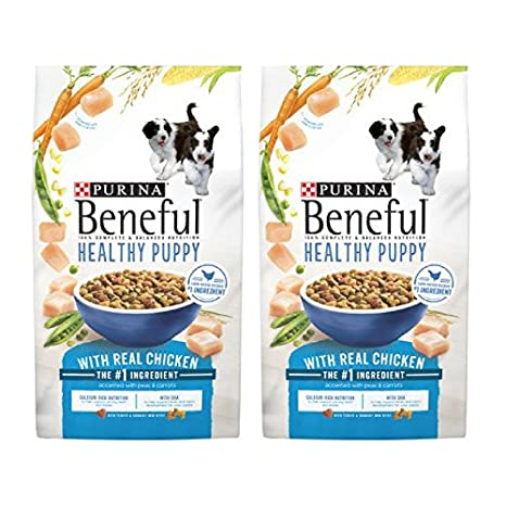 Amazoncom Purina Beneful Healthy Puppy With Real Chicken Dry Dog