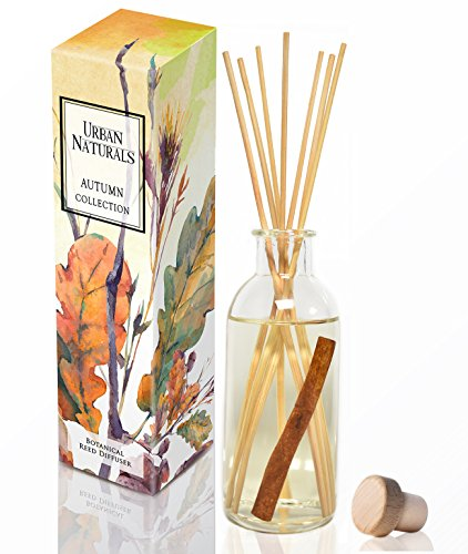 Urban Naturals Cinnamon Vanilla Oil Reed Diffuser Set | Warm, Fresh Baked Cookies | Perfect Fall Scent! | Made w/Essential Oils | Great Kitchen Scent & Gift Idea | Eco-Friendly. Vegan.