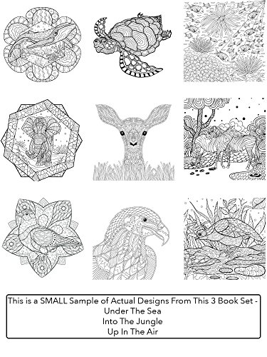 Creatively Calm Studios Adult 3 Coloring Books Set With 120 Animal Mandala And Scenic Designs