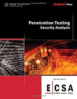 penetration testing procedures & methodologies pdf