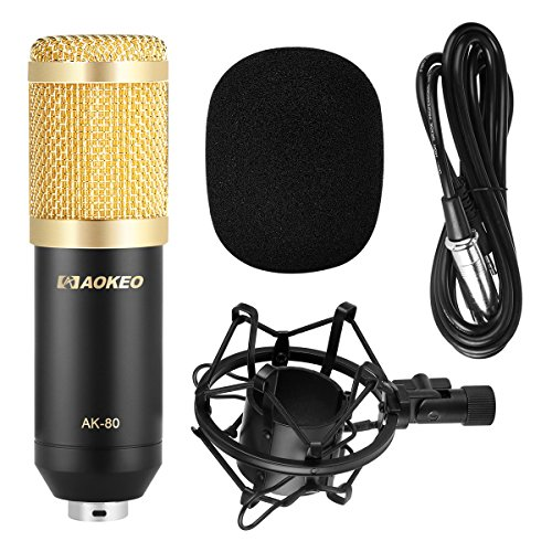 Aokeo AK-80 Professional Studio Recording Condenser Microphone Plug and Play Mic, Cardioid Pickup, Compatible Phone, Computer, Laptop,Youtube, Podcasting,Twitch, Skype,MSN,Gaming,Singing (Black) by aokeo (Image #1)