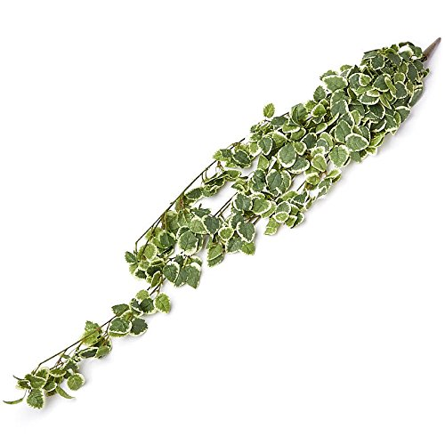 - Factory Direct Craft Cascading Variegated Artificial Ivy Greenery Bushes for Indoor Decor - 2 Bushes
