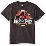 Jurassic Park Little Boys' Park Logo Graphic T-Shirt, Charcoal Heather, YM