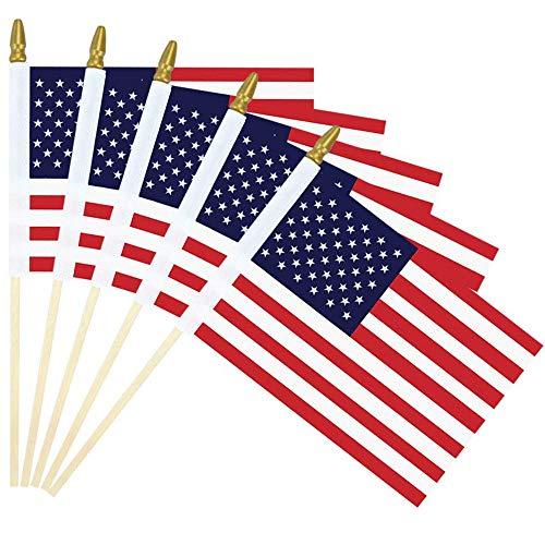 Mini American Flag - 4