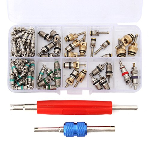 - ESUMIC Car Air Conditioning Core Valves 102Pcs,R12 R134A Automotive A/C Valve Stem Cores w/Removal Tool for Car Air Contitionaing Repair