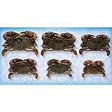 Handy Soft Shell Wild Caught Jumbo Crab, 3.5 Ounce -- 48 per case.