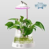 Cheap LED Indoor Garden Kit Plant Grow Light, Height-adjustable Arm, Sensitive Touch Control, Auto-timer Function for Bedroom, Kitchen, Office
