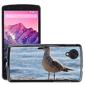 hello-mobile Etui Housse Coque de Protection Cover Rigide pour // M00137814 Gaviota Ave marina // LG Nexus 5