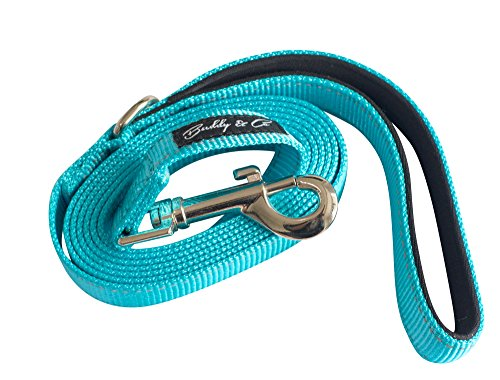 Buddy & Co. Nylon Dog Leash with Reflective Stitching for Nighttime Visibility (3/4-Inch Wide, 6ft Long)