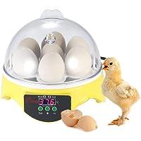 Chidi Toy ncubadora de Huevos, incubadora para Huevos